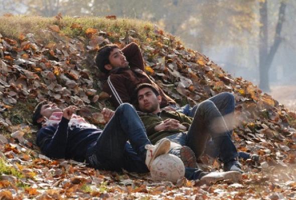 Осень - Фото №0