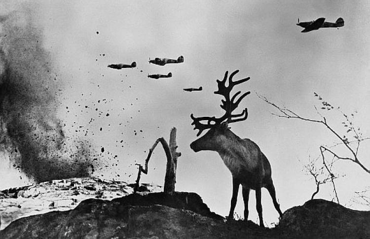 Великая Отечественная война вфотографиях великого фотографа