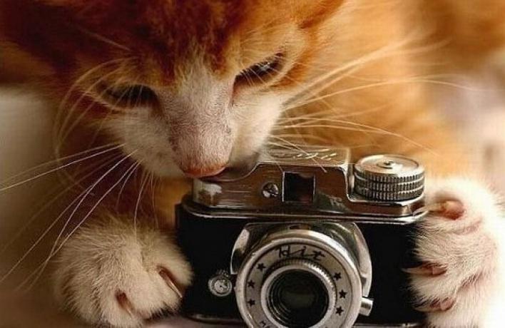 Все, что выхотели знать офотографии, расскажут вСокольниках