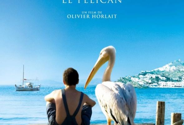 Пеликан - Фото №0
