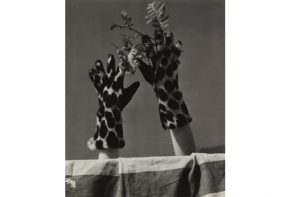 Больше, чем мода. Фотографии из коллекции Ф.К.Гундлаха - Фото №6