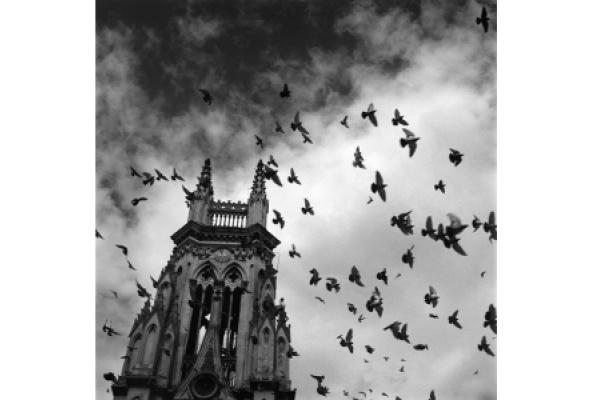 Альберто Гарсия-Аликс «Необратимость» - Фото №8