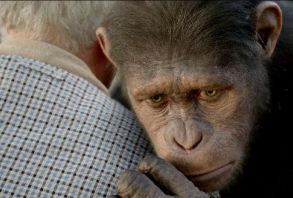 Восстание планеты обезьян - Фото №9