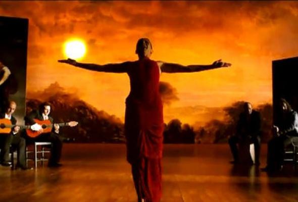 Фламенко, фламенко - Фото №8
