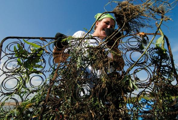 Фотоотчет: Как прошла акция «Блоггеры против мусора» вСанкт-Петербурге - Фото №4