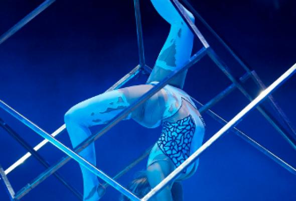 V Всемирный фестиваль циркового искусства в Москве - Фото №2