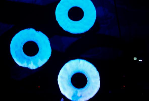 V Всемирный фестиваль циркового искусства в Москве - Фото №5