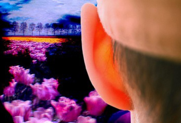 Пепперминта: Мятная штучка - Фото №1