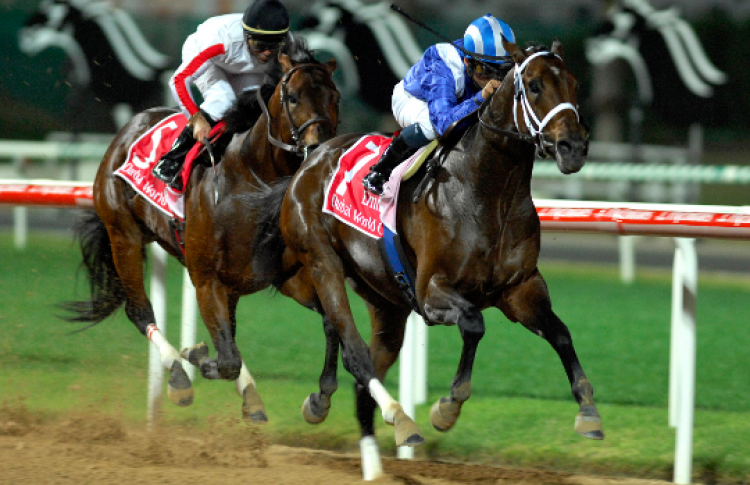 Зрелищные спортивные мероприятия вДубае