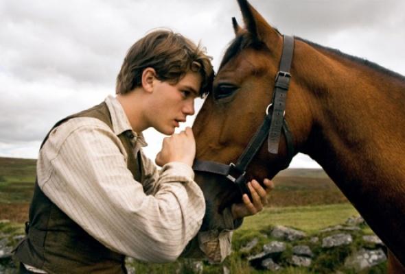 Боевой конь - Фото №0
