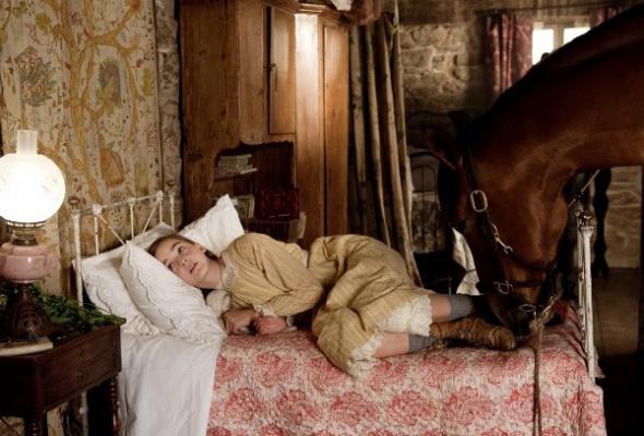 Боевой конь - Фото №1