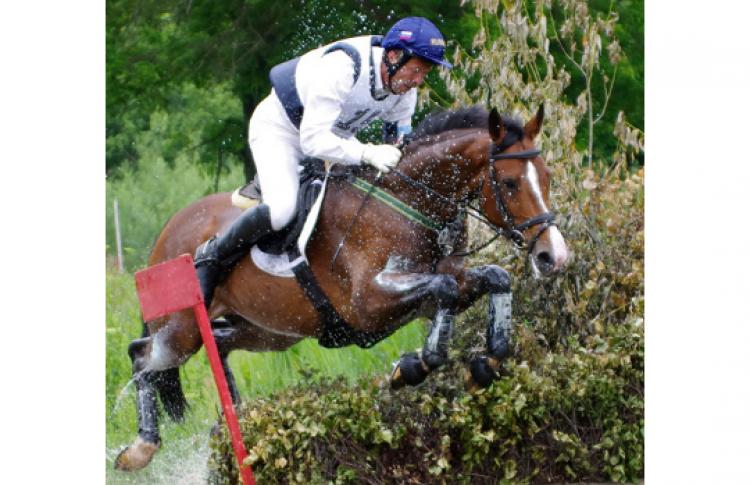 Конный спорт. Международные соревнования по троеборью