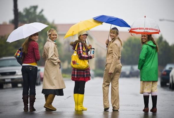 5магазинов, где можно купить модный зонт - Фото №0