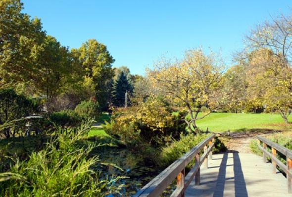 Любоваться золотой осенью теперь можно втрех дендропарках - Фото №1