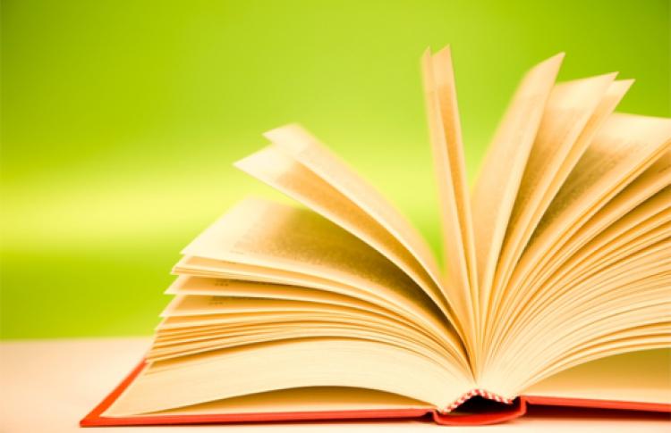 Как работает мозг человека при чтении?