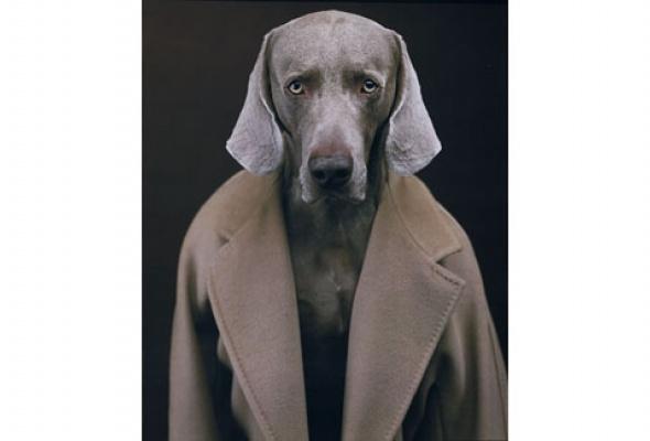 Навыставке «Coats! Max Mara» показывают все культовые пальто марки - Фото №11