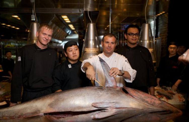 Tuna show