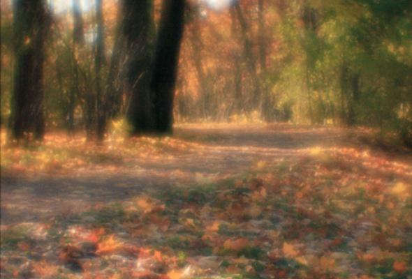 Светопись монокля - Фото №2