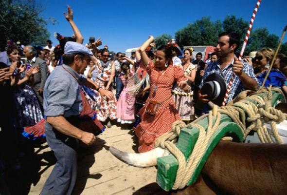 5фактов офламенко - Фото №2