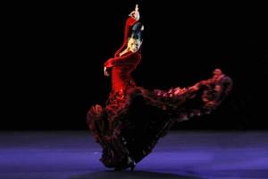 5фактов офламенко