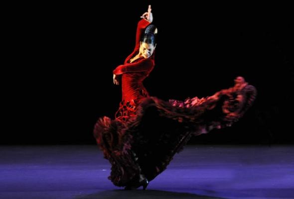 5фактов офламенко - Фото №0