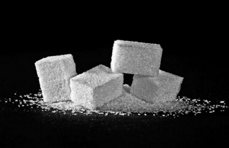 Биоэкономика. Пластик из сахара