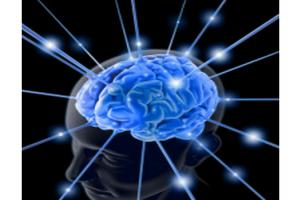 Йога для мозга