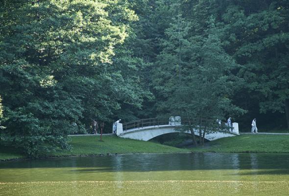 Царицынский парк - Фото №0