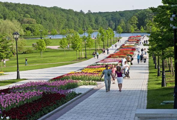 Царицынский парк - Фото №2