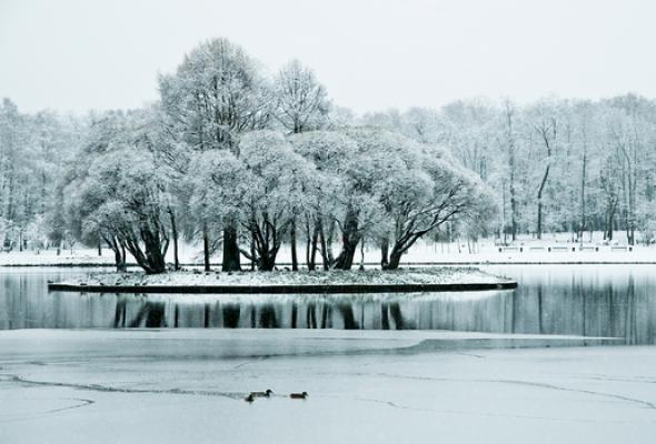Царицынский парк - Фото №3