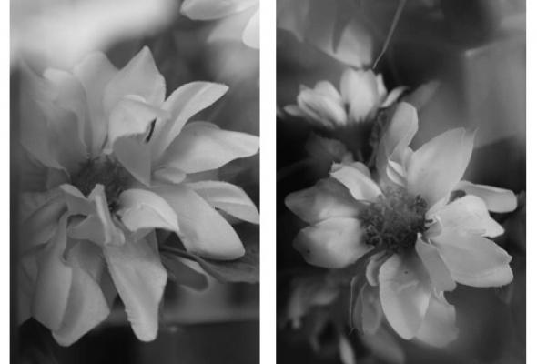 """Выставка """"Expression Beyond"""" - Фото №5"""