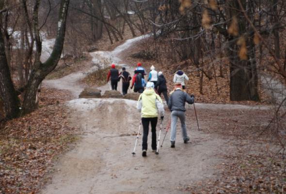 Скандинавская ходьба - Фото №4