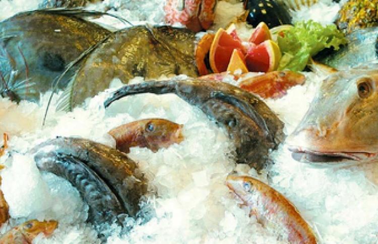Морские рестораны города