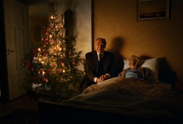 Домой на Рождество - Фото №6