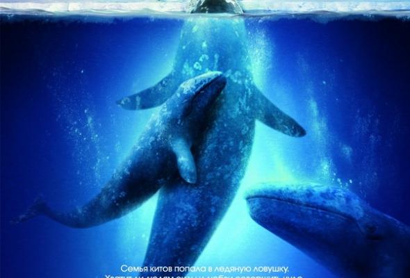 Все любят китов - Фото №0