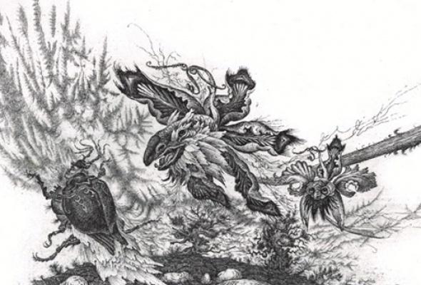 Искусство ловли насекомых - Фото №2