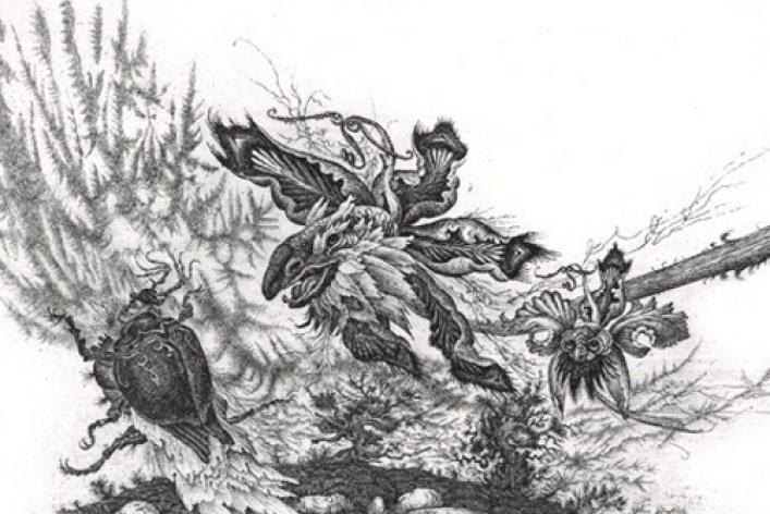 Искусство ловли насекомых
