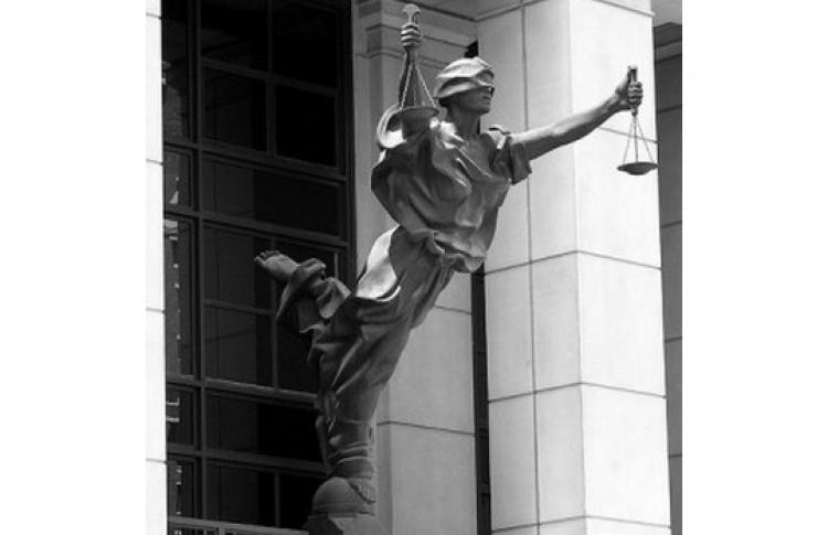 Человек и конституция: базовые понятия теории права