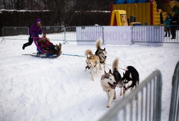 Снежное королевство вЛужниках: фоторепортаж - Фото №28