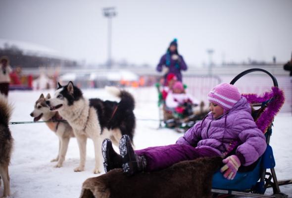 Снежное королевство вЛужниках: фоторепортаж - Фото №36