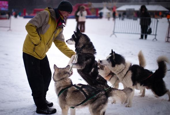 Снежное королевство вЛужниках: фоторепортаж - Фото №37