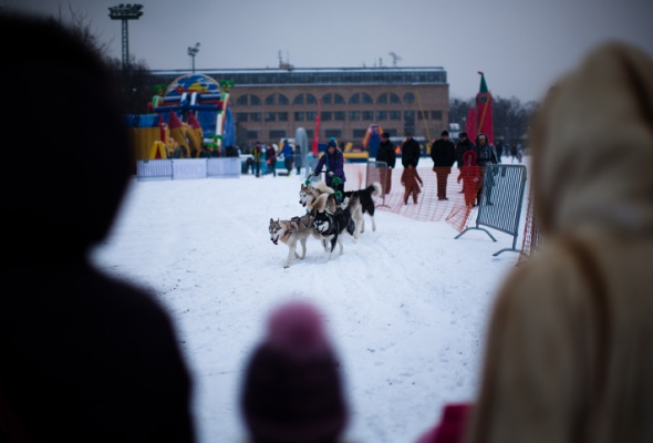 Снежное королевство вЛужниках: фоторепортаж - Фото №43