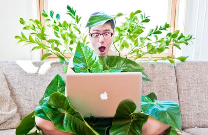 Быть «зеленым» вмегаполисе