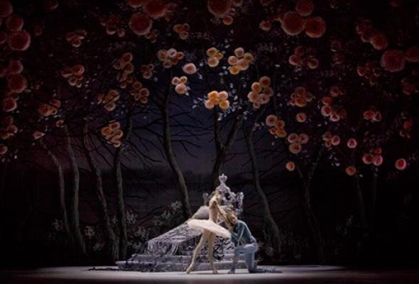 """Новая версия балета """"Спящая красавица"""" - Фото №1"""