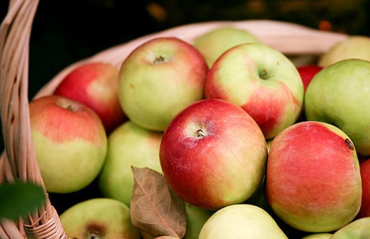 Акция Time Out «Молодильные яблочки»