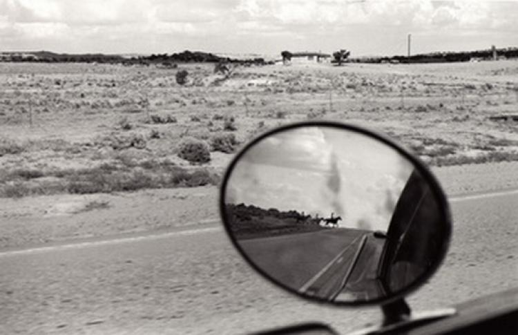 Бернард Плоссю «Из Калифорнии в Нью-Мексико»