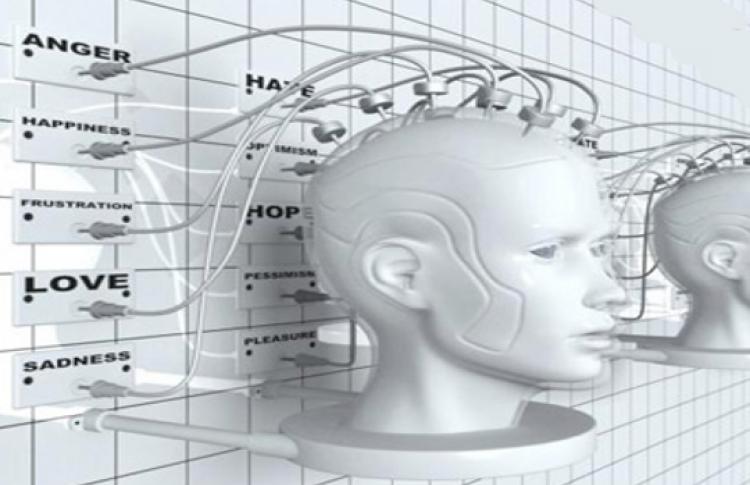30 важных фактов о мозге