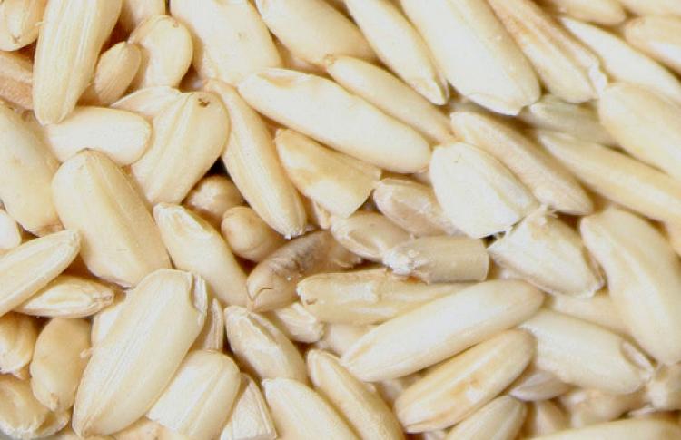 Путь зерна: от семечки до упаковки