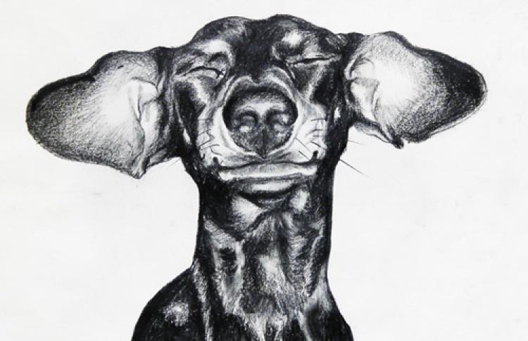 """Конкурс детского рисунка на выставке """"Собакам о собаках"""""""