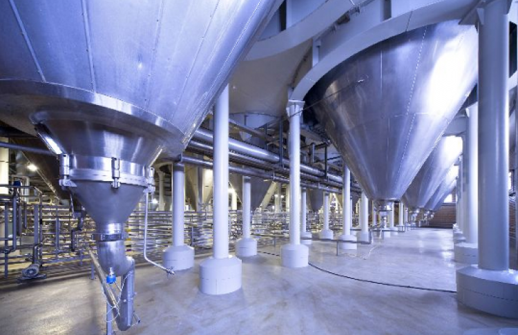 История пивоварения